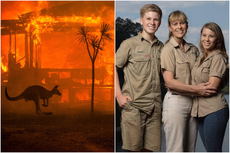 Irwin Family Australian Wildfires How To Donate