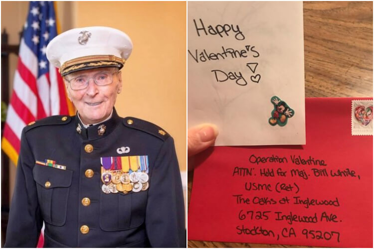 Marine Veteran Valentine's Day Cards